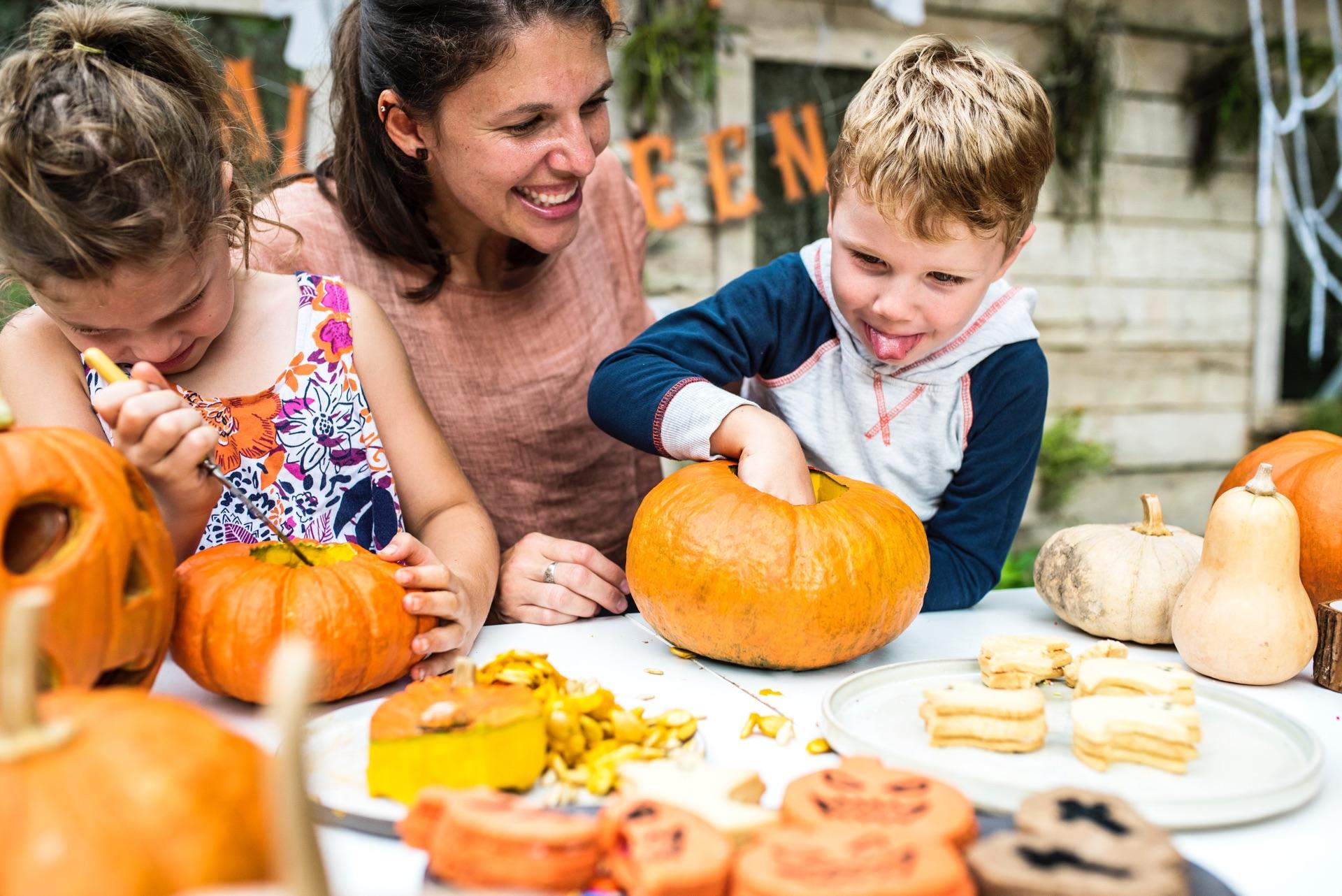 Pumpkin Picking | Bolin Grove Farms