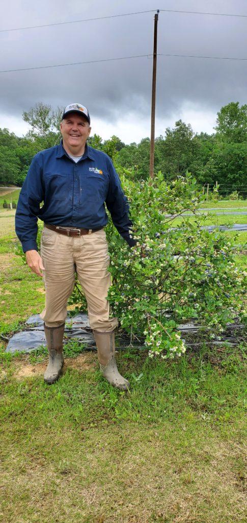 Walter standing near blueberries